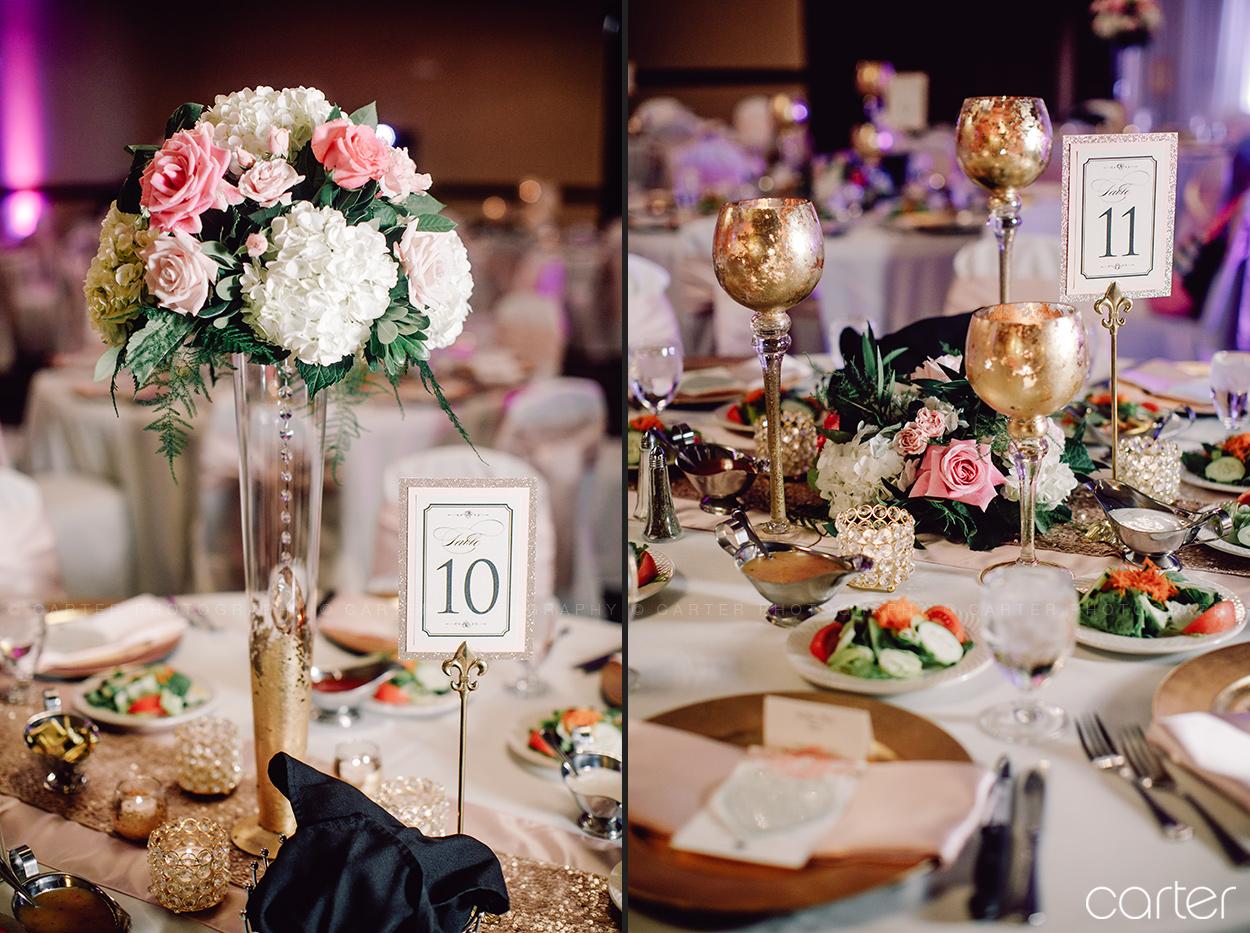 West Des Moines Iowa Wedding Photographers Hilton Garden Inn Pictures - Carter Photography