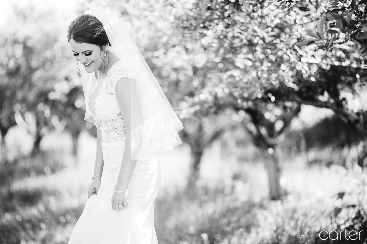 Weston Red Barn Farm Wedding Kansas City Bride Carter Photography
